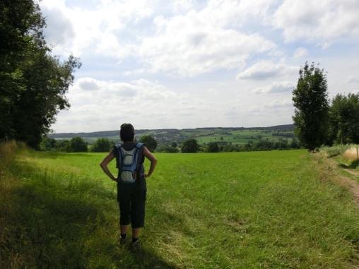 Uitkijkend over het Geuldal