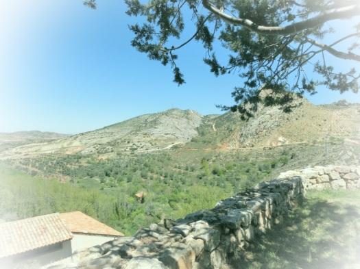 Bergachtig gebied