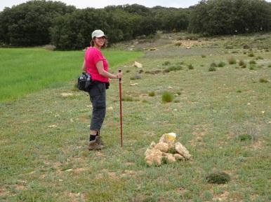 Opzoek in het land der steenmannetjes