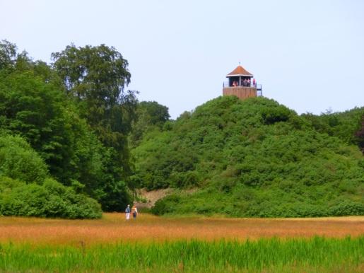 Seringenberg