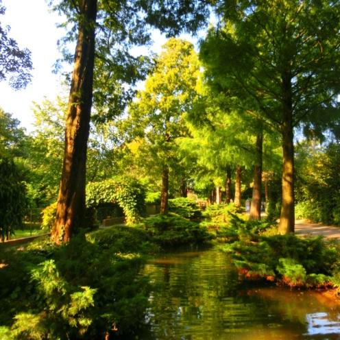 bomen-en-waterpartijen