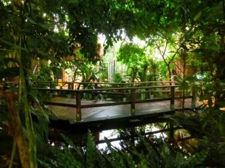 junglepaden