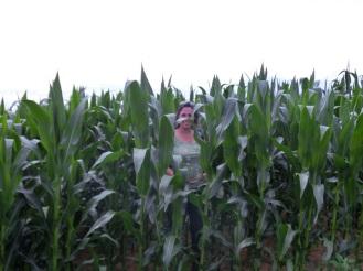 Tussen de maïskolven