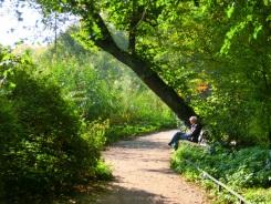 boekje-lezen-in-het-park