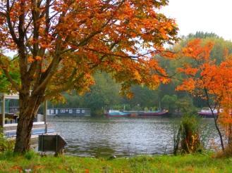 herfst-aan-de-amstel