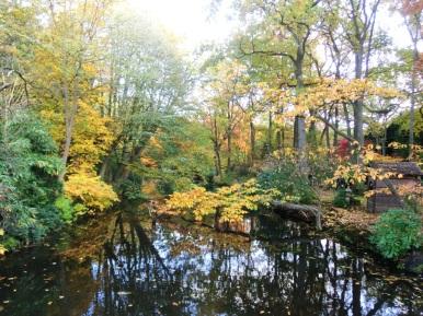 japanse-tuin-in-herfsttooi