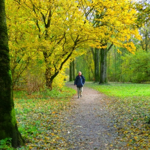 een-wandeling-in-het-westerpark