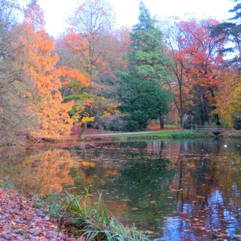 sacre-coeur-in-de-herfst