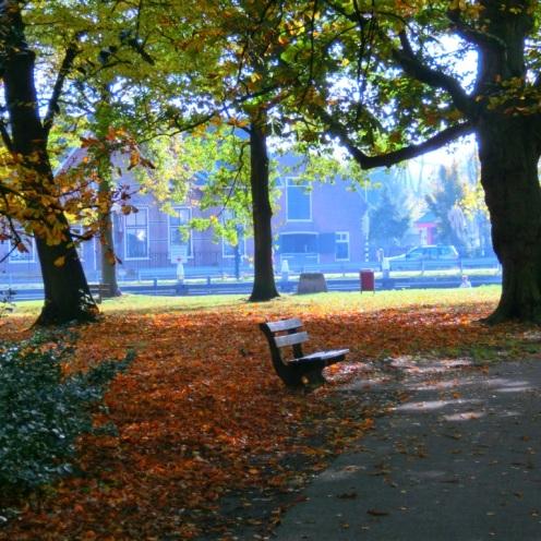 wandelbankjes-in-het-park