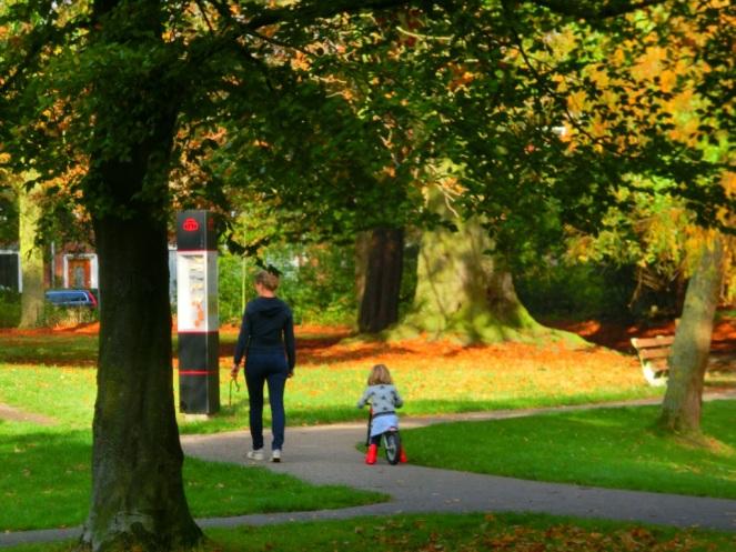 wandelen-in-het-park