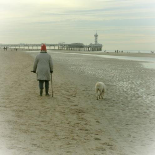 wandelen-met-de-hond