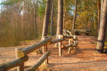 houten-afrastering
