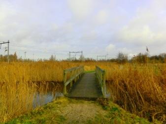 houten-bruggetje