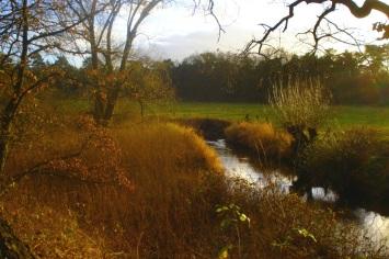 meanderende-rivier