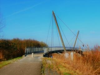 brug-richting-oostvaardersplassen
