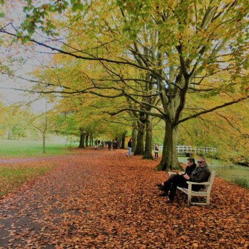 clingendael-in-de-herfst