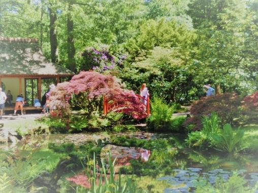 dromerige-plaatjes-japanse-tuin