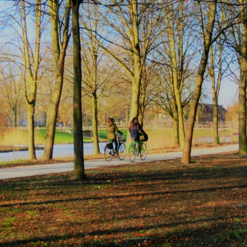fietsers-in-het-almeerder-randbos