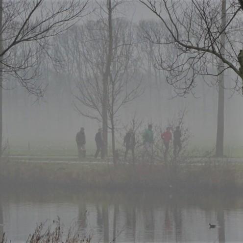 in-de-mist
