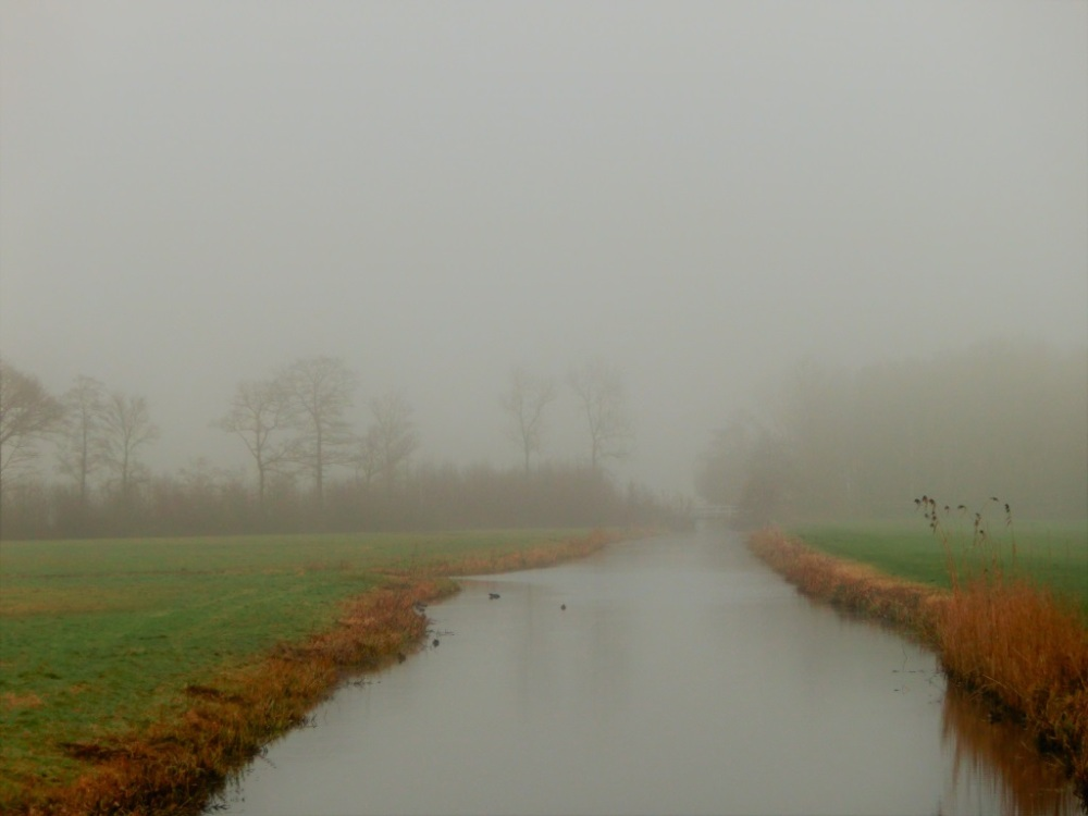 polder-in-de-mist