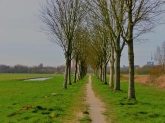 Duivendrechtse polder
