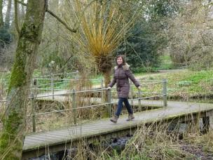 Wandelaar in het park