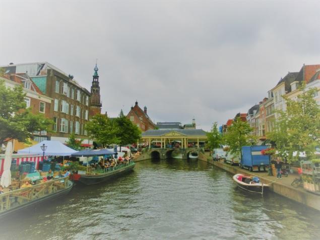 Nieuwe Rijn