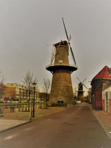 Schiedam stad van de molens