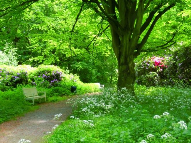 Sprookjesachtige sfeer Landgoed Ockenburgh