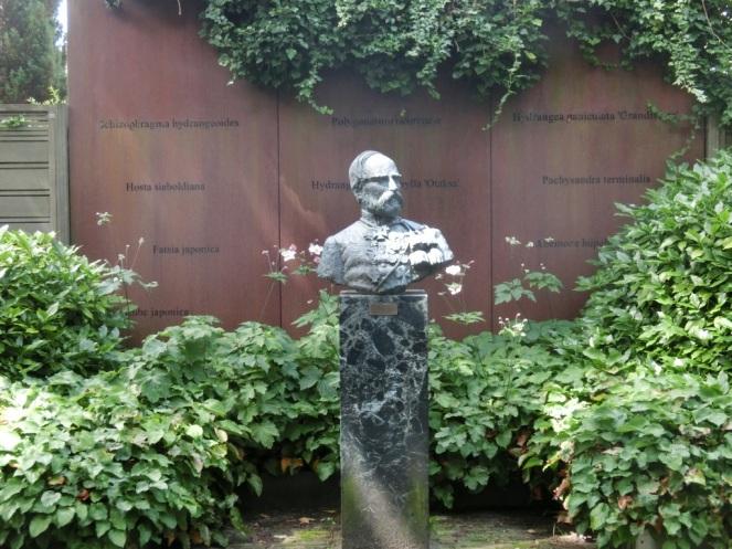 Borstbeeld Von Siebold