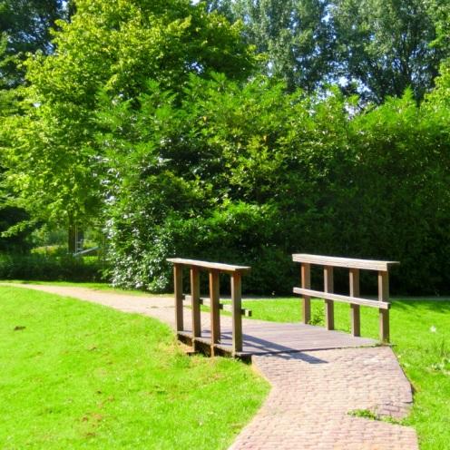 Bruggetje Natuurtuin de Wiedijk