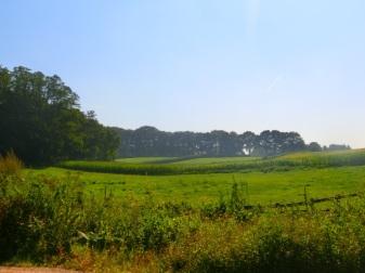 Glooiende landschap van Berg en Dal