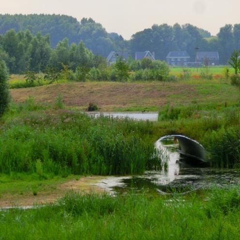 Groene oase
