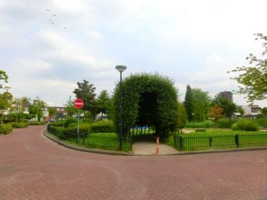 Haag met bomen
