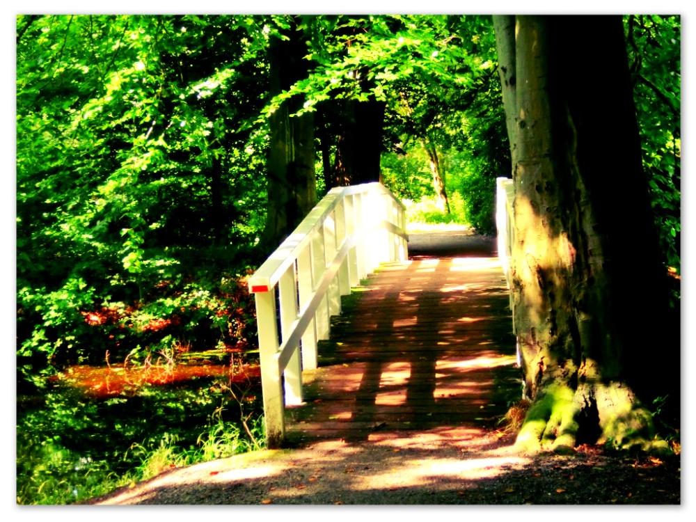Park Clingendael