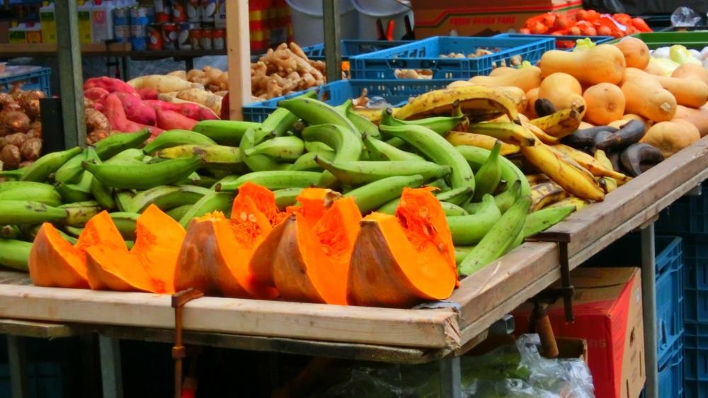 Dagmarkt