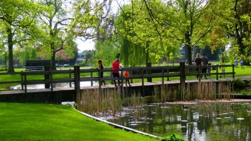 Eendjes voeren in het Volkspark
