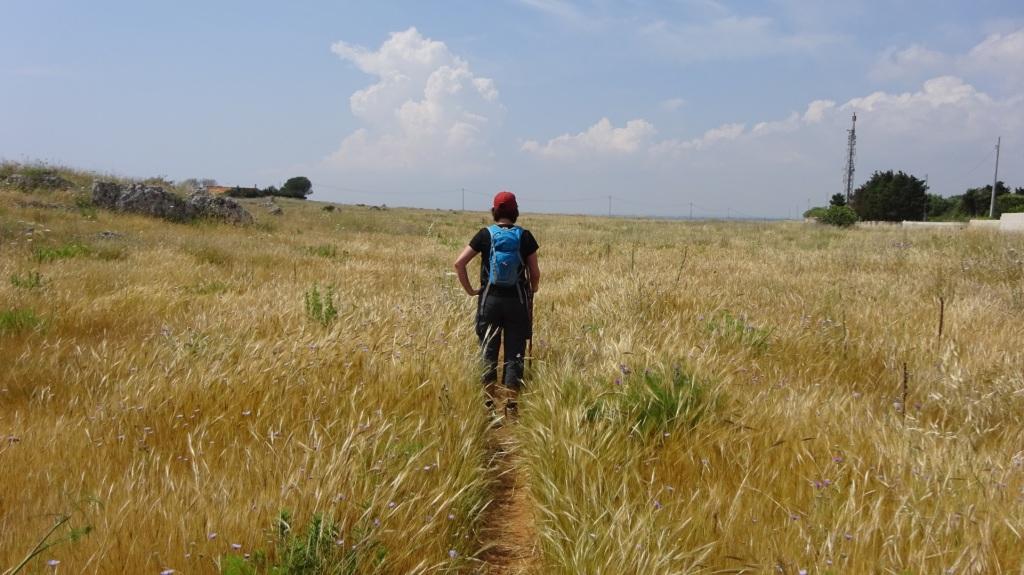 Wandelen door de bloeiende velden