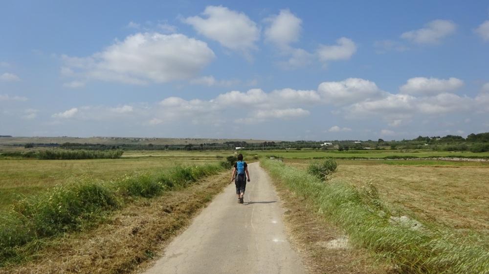 Wandelen tussen agrarische velden
