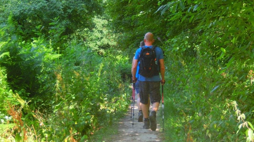 Nordic Walkers lopen de N70.jpg