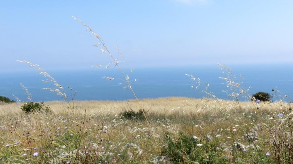 Uitzicht Adriatische zee