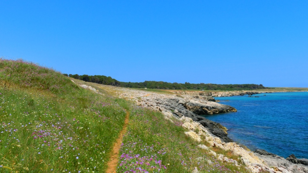Kustwandeling langs de Adriatico