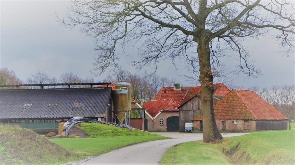 Boerenterrein