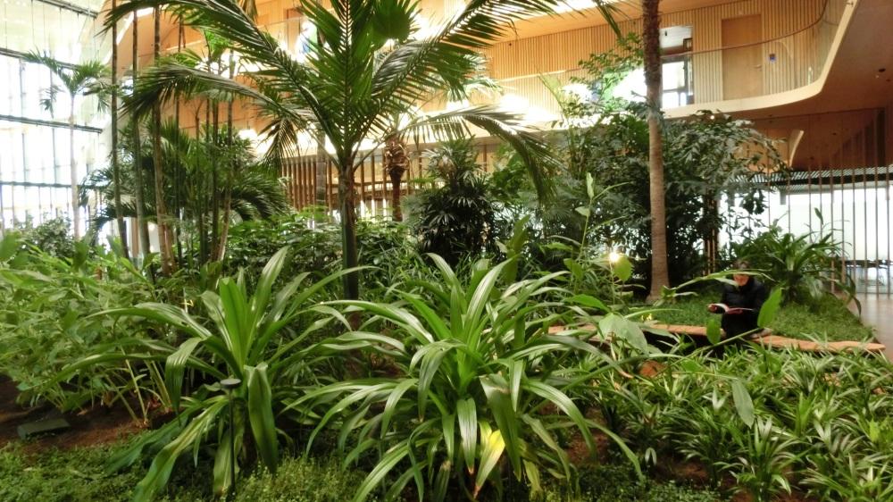 Botanische tuin Hotel Jakarta