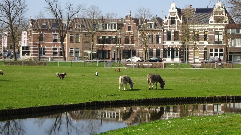 Park Eekhout