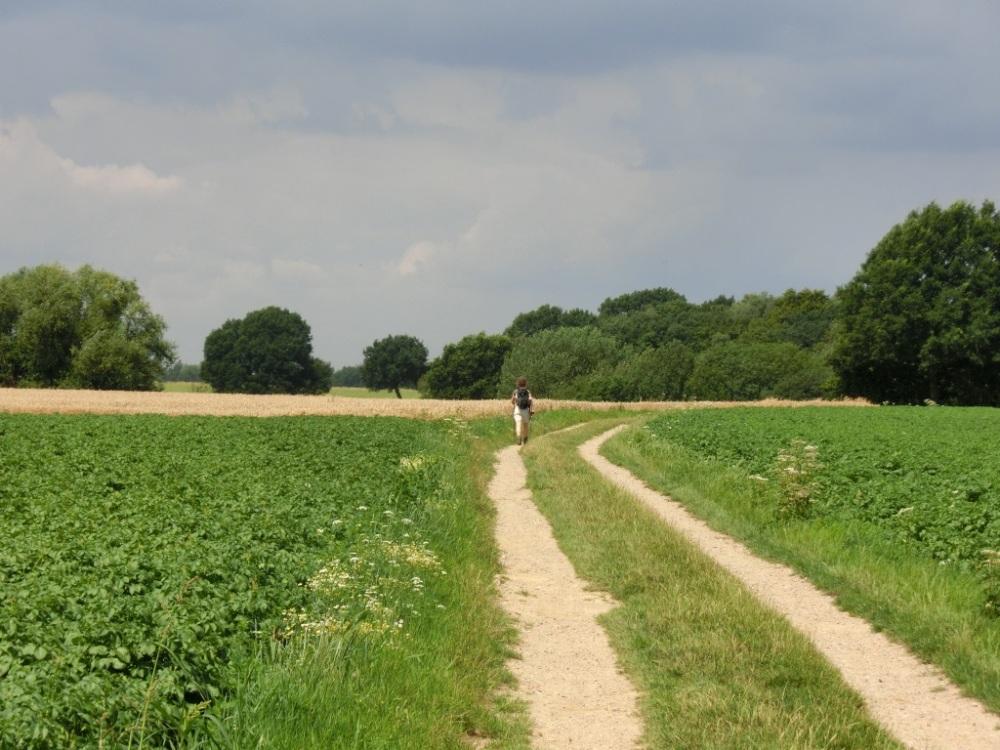 De eenzame wandelaar