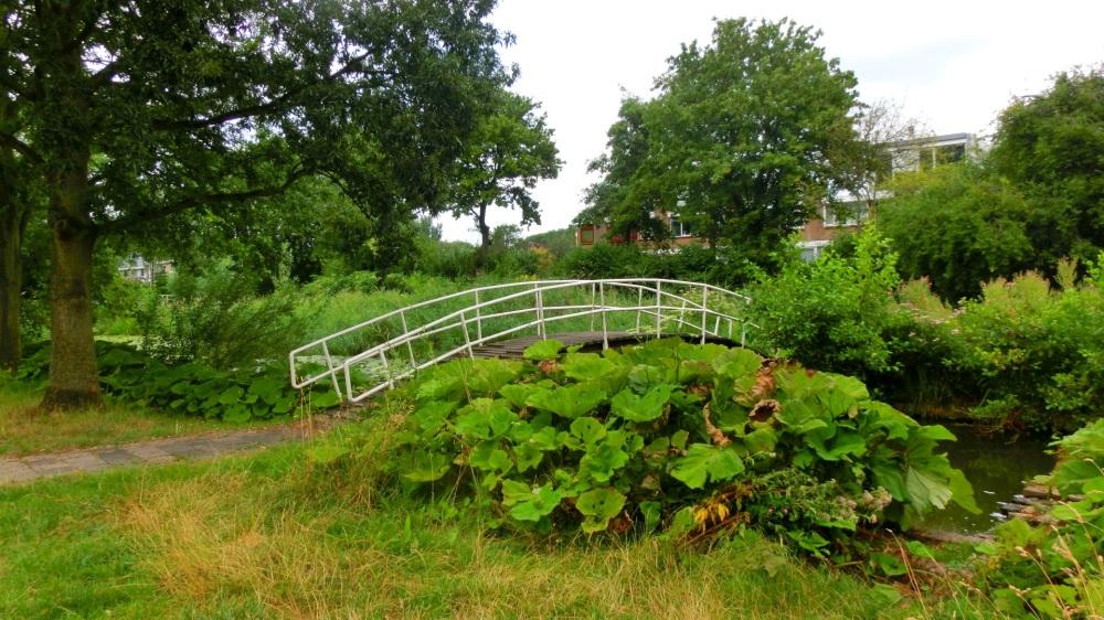 Henry Dunant Park