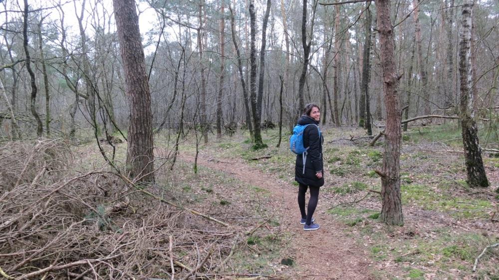 Wandelen over bospaden