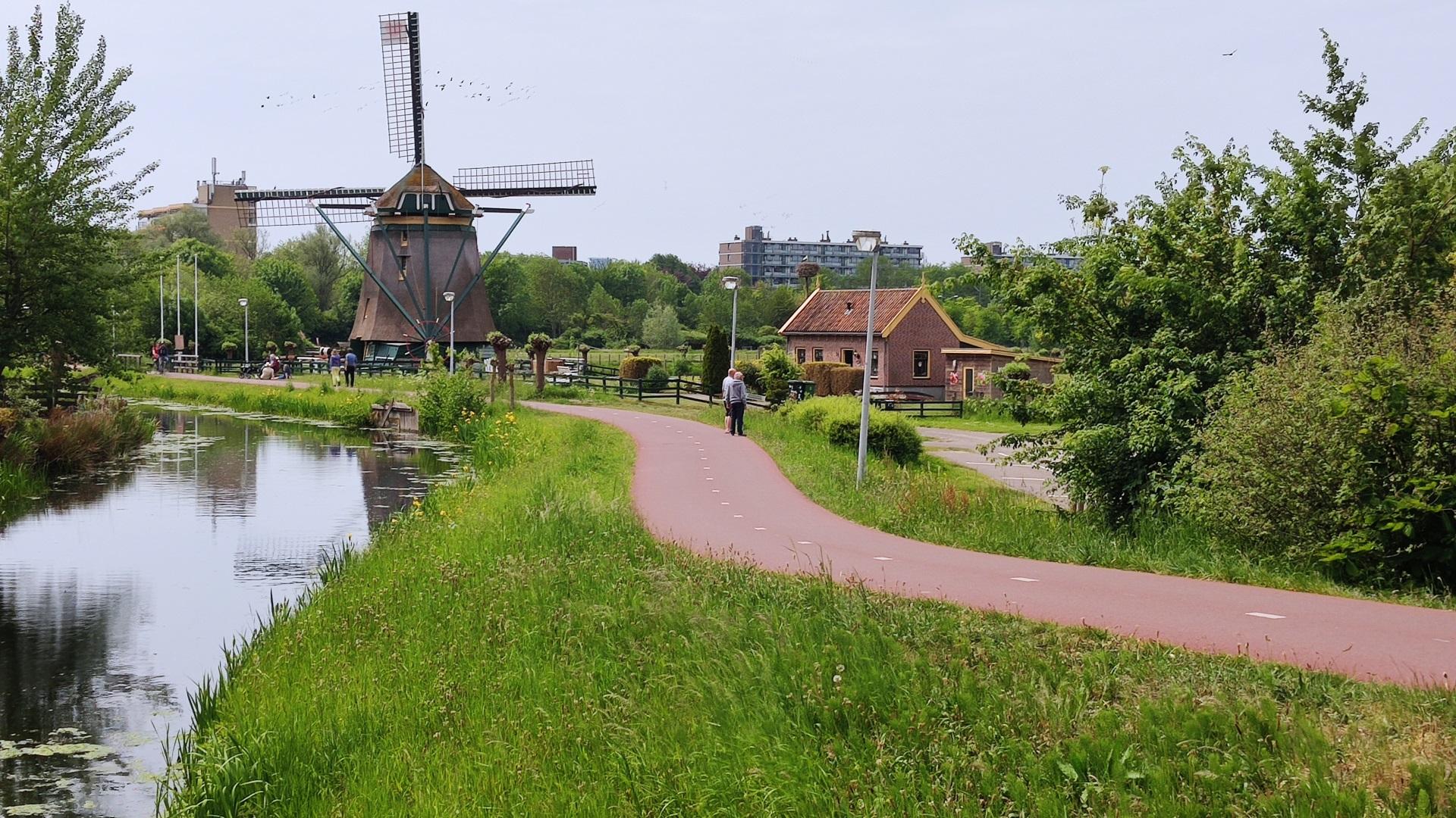 hollands-landschap