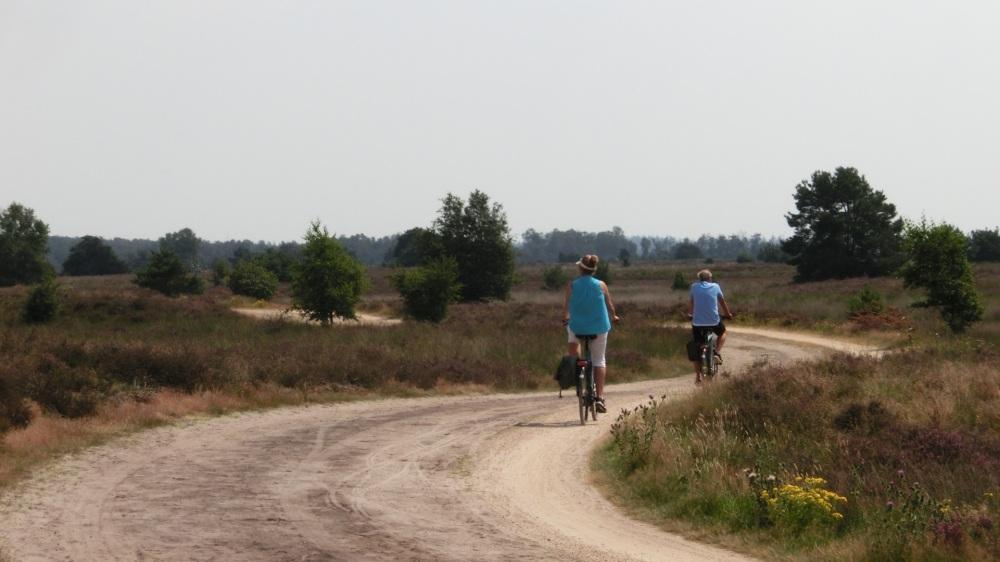 Fietsers Strabrechtse Heide